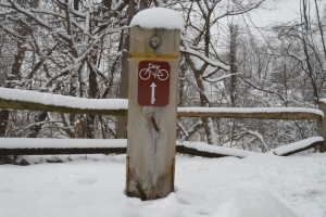 Snowy Bike Post