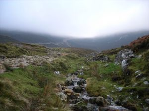 Ireland (377)