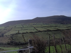 Green Fields of Ireland