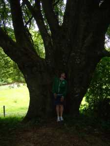 Magnificent Tree And Me