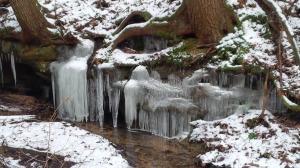 Frozen By The Creek Side