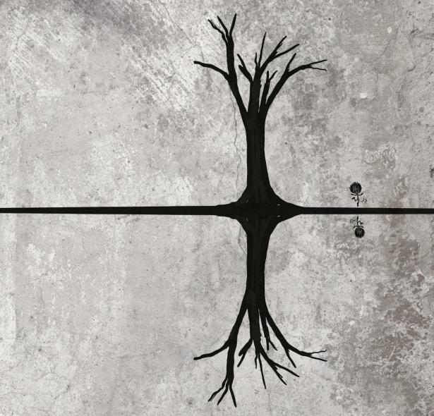 Dance, Imagination, Reflection