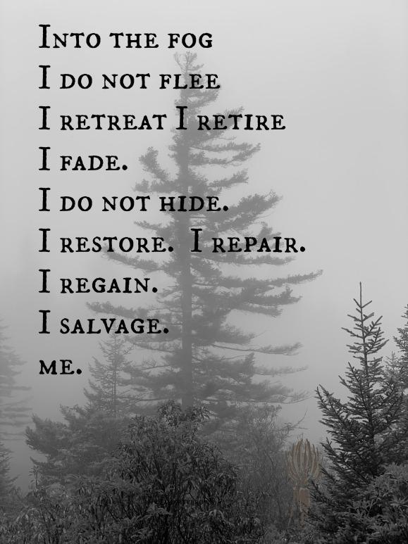Tree, Fog, Salvage