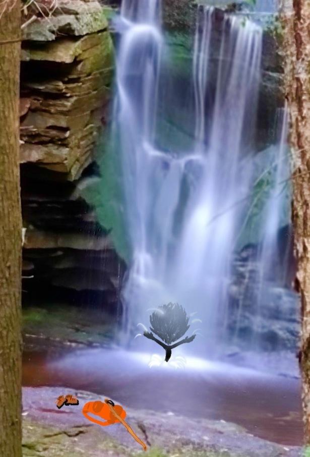 Waterfall, Hike