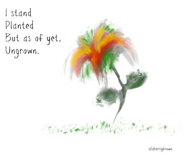 Flower, Ungrown