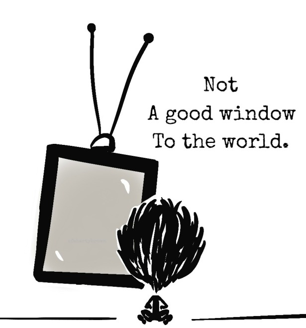 TV, television, window
