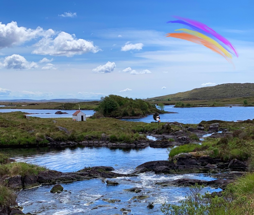 Tiny, Cottage, Rainbow, Live
