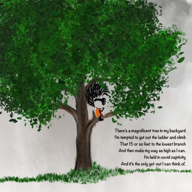 Tree, Climb