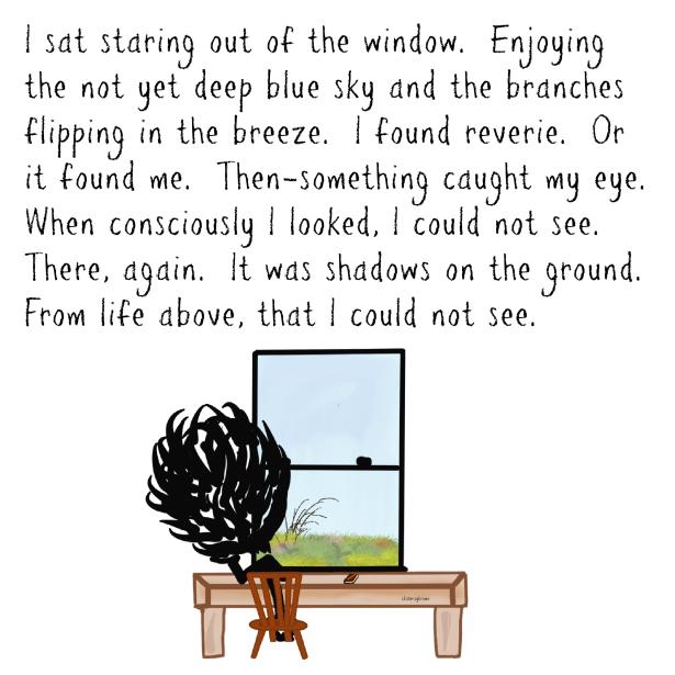 Window, Faith, Believe, Life, Shadows