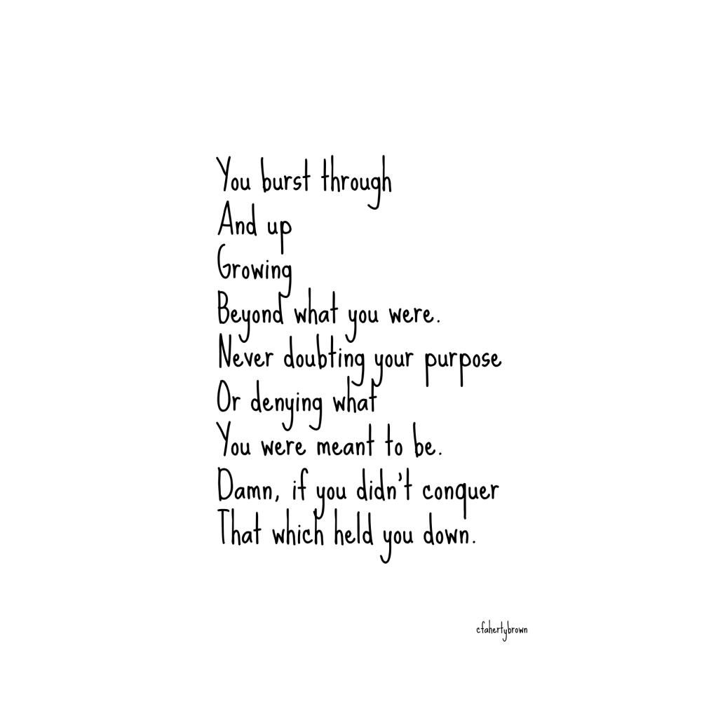 poetry, poem, prose, mountain, grow, break through, rise up